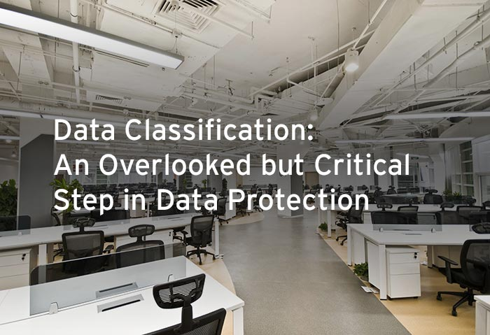The Need for Data Classification