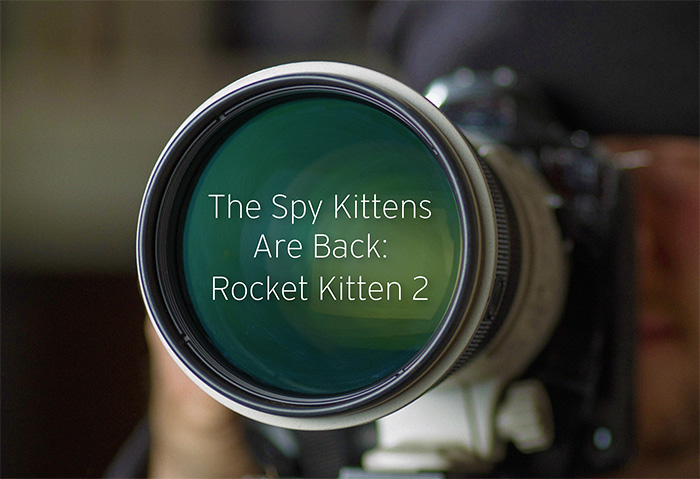 Rocket Kitten Continues Attacks on Middle East Targets