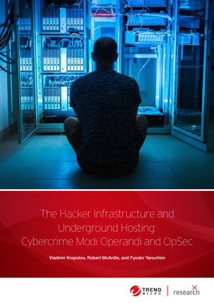 The Hacker Infrastructure and Underground Hosting: Cybercrime Modi Operandi and OpSec