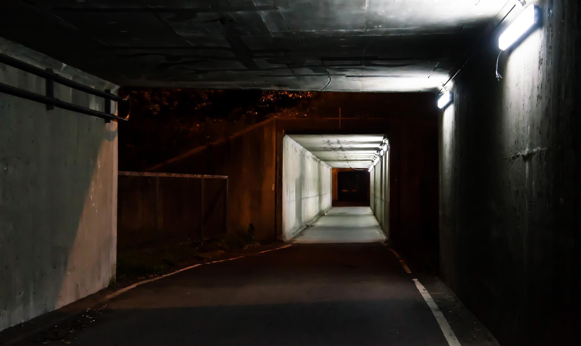 Underground Software Business