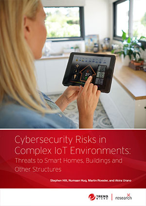 Cybersecurity Risks in Complex IoT Environments