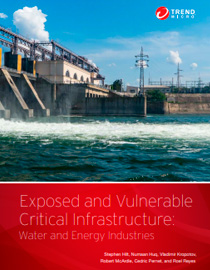 Critical Infrastructures Exposed and at Risk: Energy and Water Industries