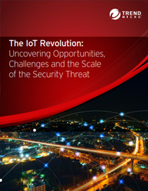 The-IoT-Revolution-Uncovering-Opportunities-Challenges-Scale-Security-Threat