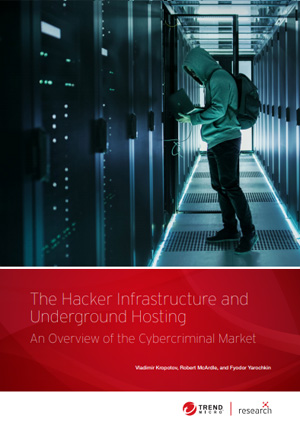The Hacker Infrastructure and Underground Hosting: An Overview of the Cybercriminal Market