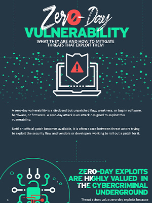 Security 101: Zero-Day Vulnerabilities and Exploits