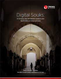 Digital Souks: A Glimpse into the Middle Eastern and North African Underground