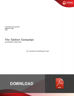 The Taidoor Campaign: An In-depth Analysis