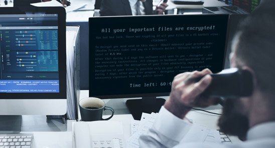 The Reign of Ransomware
