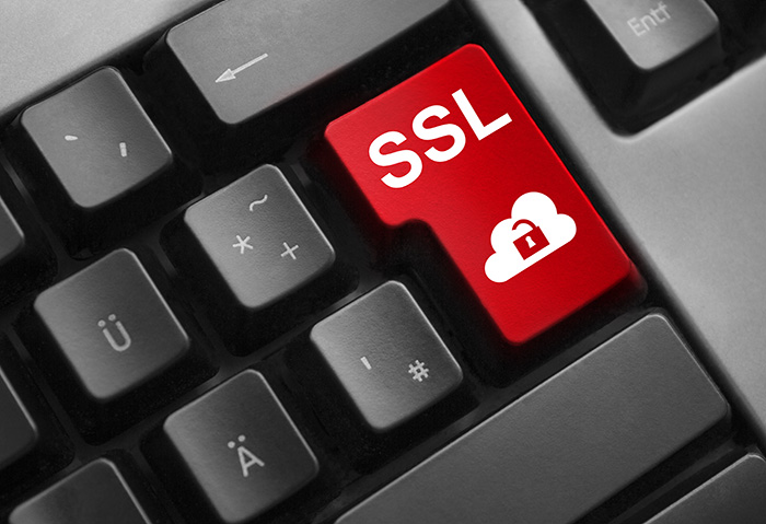 News of a bug that affects Transport Layer Security/ Secure Sockets Layer (TLS/SSL), an authentication protocol used by countless sites and browsers,