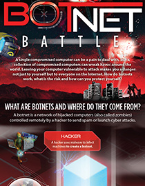 Botnet Battle Infographic