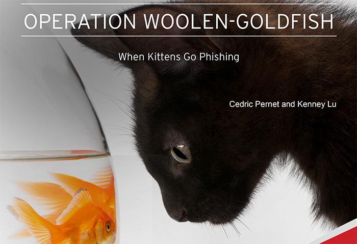 Operation Woolen Goldfish: When Kittens go Phishing