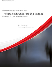 The Brazilian Underground Market